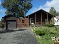 66 Woodsman Drive Pagosa Springs CO, 81147