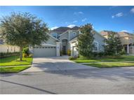 20410 Walnut Grove Lane Tampa FL, 33647