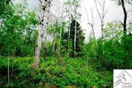 Lot8 Blk1 Snowshoe Tr Wildwood Acres Tofte MN, 55615
