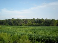 35 Acre Highway 161 Bowling Green MO, 63334