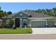 2509 Wood Pointe Drive Holiday FL, 34691