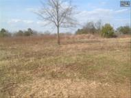 4816 Augusta Highway Lot B Gilbert SC, 29054