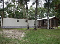 137 285th Ave Steinhatchee FL, 32359