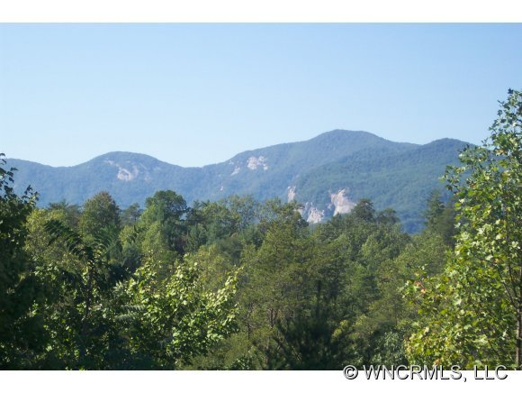Home for Sale:207 Wildcat Blvd., Lake Lure NC, 28746