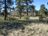 36 Silver Spur Way Pine CO, 80470