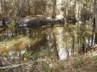 000 Burgess Road Moultrie GA, 31768