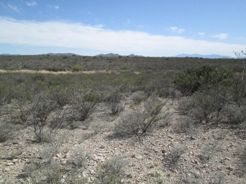 Lot #1 E Desert Meadow Road Tombstone AZ, 85638