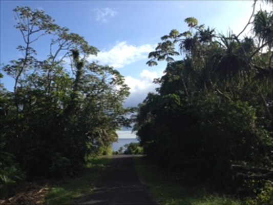 S Papai St Lot #: 1850 Pahoa HI, 96778